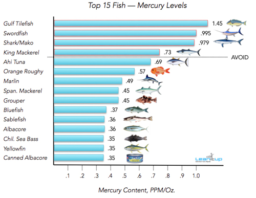 鱼肉重金属含量的排行榜